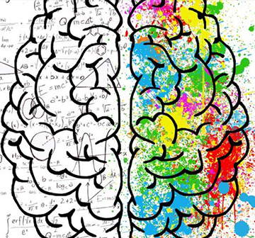 Gelişim Odaklı Zihin Yapısı
